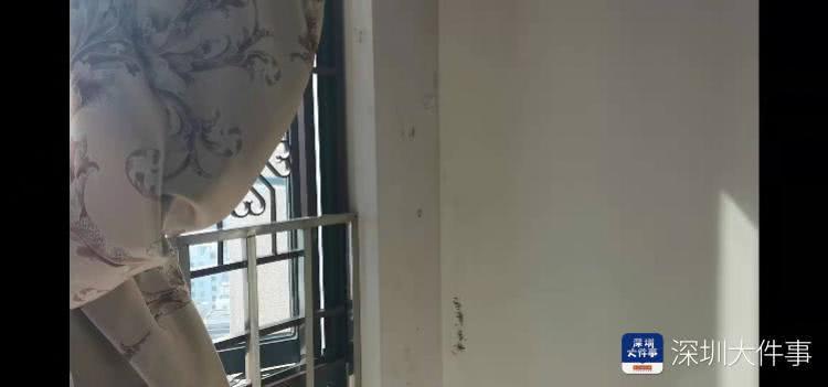 深圳一小区抽签选取应急物管,有业主质疑合法性,部门回应