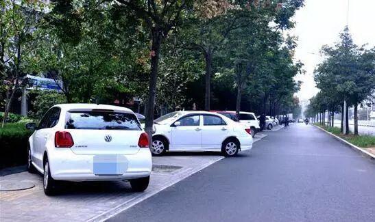 破解停车难问题!深圳拟出台停车管理条例,这些行为将纳入征信